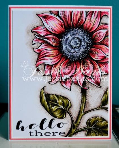 pp Sunflower 1.jpg