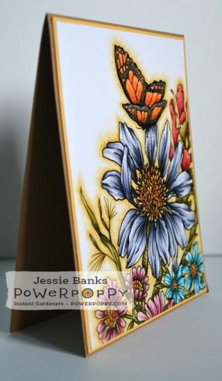 PP Prairie bouquet 2