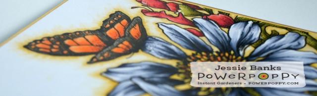 PP Prairie bouquet 3