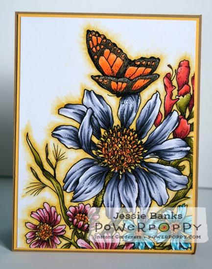 PP Prairie Bouquet